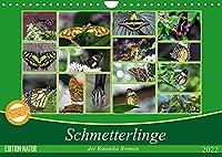 Schmetterlinge der Botanika Bremen (Wandkalender 2022 DIN A4 quer): Der Schmetterling, der von Blume zu Blume flattert, bleibt immer mein; den ich im Netz fange, verliere ich. (Monatskalender, 14 Seiten )