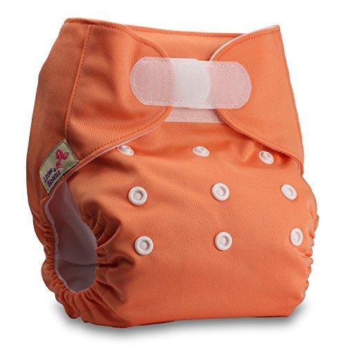Littles & Bloomz, Reusable Pocket Cloth Nappy, Fastener: Hook-Loop, Set of...