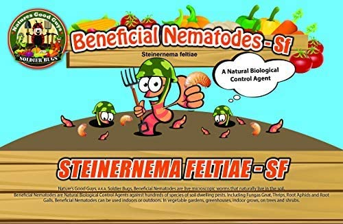 NaturesGoodGuys Beneficial Nematodes 開店祝い Steinernema Bi - feltiae SF <セール&特集>