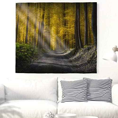 CHSUNHEY Tapisserie Large Golden Maple Forest with Sunlight Wall Tapestry Wild Tree Woods Path Light Beams Wall Art Tapestry Nature Landscape Wall Décor Wall Hanging Boho Hippie Wall Blanket Ta