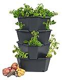 PAUL POTATO Maceta par el Cultivo de Patatas - 4 Partes - Diseño Innovador - Ideal para el Jardín, Balcón - 4 x 14 L