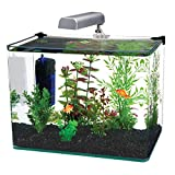 Best Fish Tanks (May 2020) Review 8