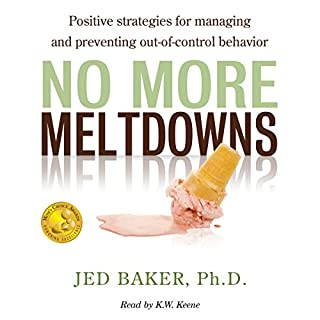 No More Meltdowns cover art