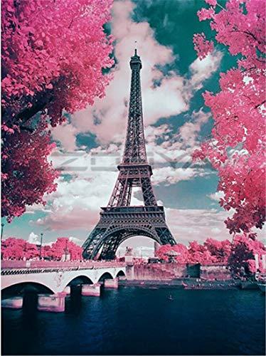 WOWDECOR DIY Malen nach Zahlen für Erwachsene Kinder Mädchen, Eiffelturm Blume 40x50cm Vorgedruckt Leinwand-Ölgemälde (ohne Rahmen)