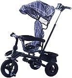 HUJPI Triciclo Infantil, Triciclo para Niños con el pabellón de bebé Triciclo con Caja de Almacenamiento Triciclos Bebes con Empujar la manija 1-5 años,Blue