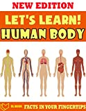 Let's Learn! Human Body: Fact In Your Fingertips - The Encyclopedia Book For Kids About Human Body (English Edition)