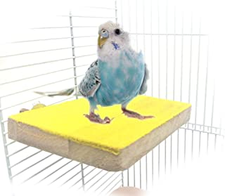 Colorful Bird Perch Stand Platform Natural Wood Playground Paw Grinding Clean for Pet Parrot Budgies Parakeet Cockatiels Conure Lovebirds Rat Mouse Cage Accessories Exercise Toys (Side)