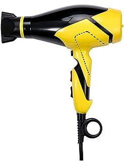 DKEE Hairdryer Nuevo Secador De Pelo De Ajuste Múltiple del Secador De Pelo De Alta Potencia del Control De La Temperatura del Viento Grande Y Caliente De Alta Potencia