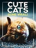 Cute Cats Gone Viral!