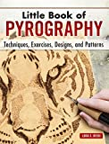 Little Book of Pyrography: Techniques, Exercises, Designs, and Patterns