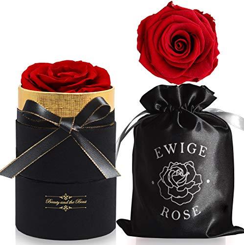 iteaauk Ewige Rosen, Infinity Rose, Echte Rosen, Die Schöne und das Biest Rose Geschenk Kit, für Valentinstag, Geburtstag, Hochzeit, Muttertag, Jubiläum, Weihnachtstag - Rot