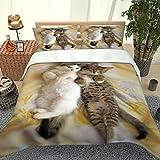 YYXLL Funda Nórdica Duvet Cover Set 3D Printed del Gato hipoalergénico Suave con 2 Fundas de Almohada del lecho con Cierre de Cremallera 3 Piezas,A2,King