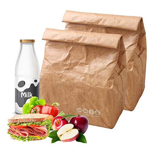 Hangnuo 2 Pack Insulated Brown Paper Lunch Bags Reusable, Retro Lunch Sacks for Adults Work Office & Kids School Picnic, Brown Paper - 10' x 8' x 4.3'