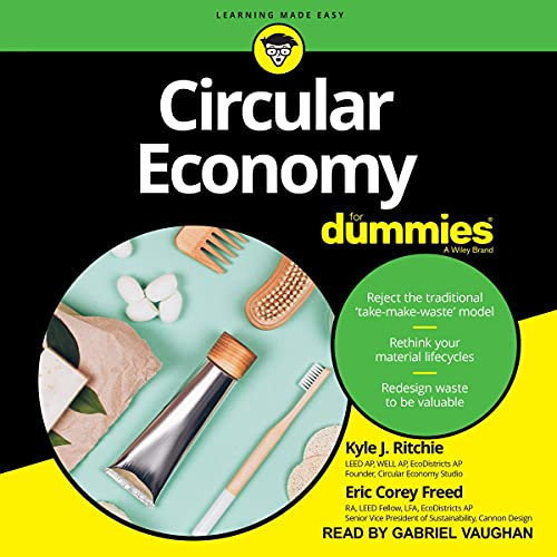 Circular Economy for Dummies Titelbild