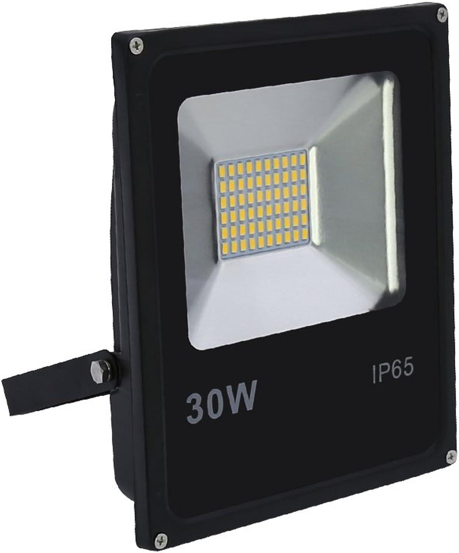 HG 30W LED Fluter Strahler Scheinwerfer Baustrahler Ultraslim Aluminium Auenstrahler Kaltwei Wasserdicht WandstrahlerLampe IP65 Auen Outdoor