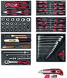Gedore Red Juego de herramientas en espuma módulos, 81piezas)