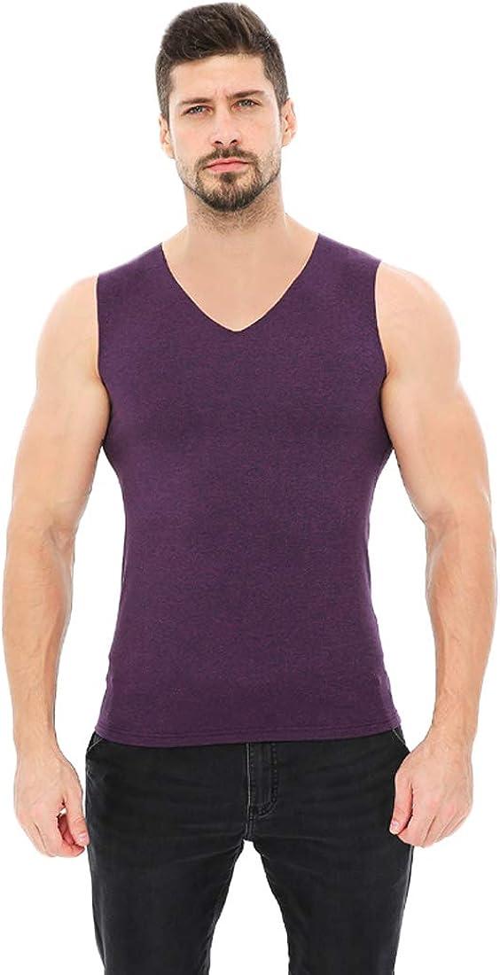 Aiweijia Men's Thermal Tops V Neck Soft Warm Seamless Man Thermal Underwear Purple