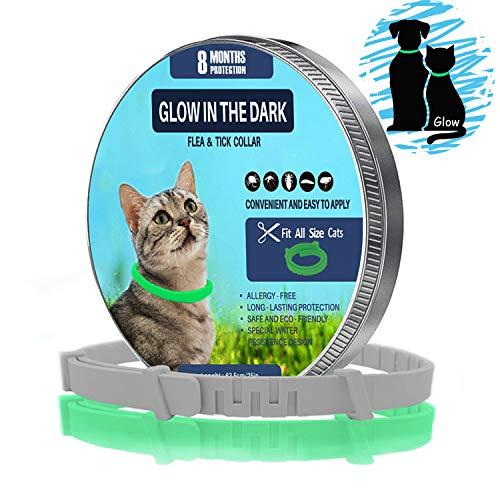 ZSIIBO Collar de pulgas para gatos Tratamiento de pulgas con luces para gatos oscuras, impermeables, tamaño ajustable, 8 meses, protección de aceites esenciales naturales, collar de pulgas, perros