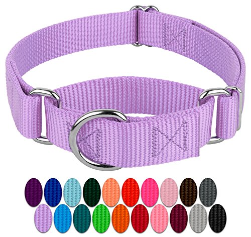 Country Brook Petz - Lavender Martingale Heavy Duty Nylon Dog Collar - 21 Vibrant Color Options (3/4 Inch Width, Small)