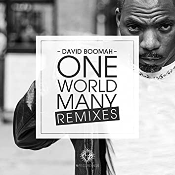 One World Many (Remixes)