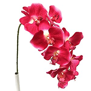 Silk Flower Garden 2 Pcs Artificial Butterfly Orchid Spray 38″