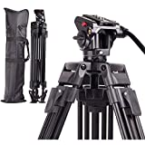 Regetek Professional Video Camera Tripod System, 65 Inch Heavy Duty Aluminum...