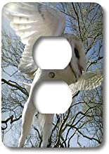3dRose LLC LSP_9919_6 Barn Tyto Alba Also White Night Owl, 2 Plug Outlet Cover