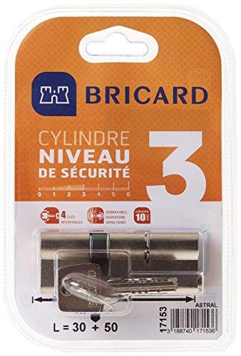 Bricard 17153 Cylindre Débrayable Astral 2,9 en Laiton 10 Pistons, 2 entrées 30+50, Protection Contre Le perçage et Le crochetage. Carte personnelle, Acier Nickelé, 80