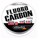 Asari - Fluorocarbon Coating 250, Color Transparente, Talla 0.500 mm