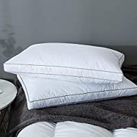 2-Pack Yalamila Feather Queen Size Pillows