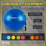 Ballon De Gym (Tailles Multiples) Ballon Suisse Pour La Forme Physique, La Stabilité, L'équilibre Et Le Yoga-Guide D'entraînement Et Pompe Rapide Inclus-Design De Qualité Professionnel Anti-Eclatement #1