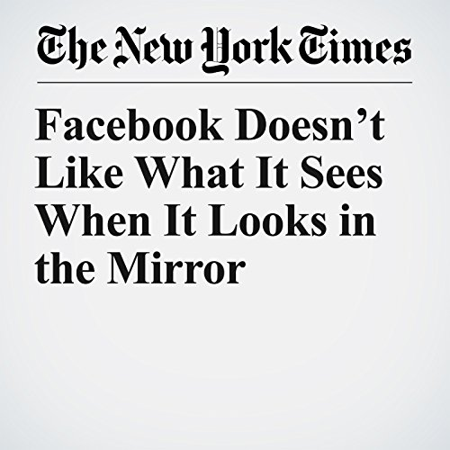 Facebook Doesn't Like What It Sees When It Looks in the Mirror audiobook cover art