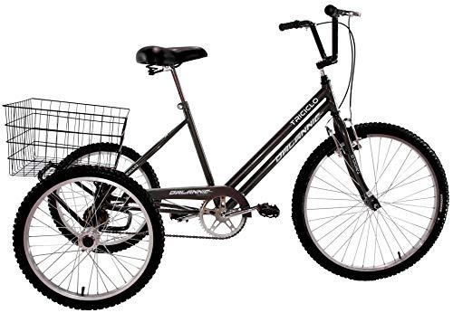 Bicicleta Triciclo Aro 26 Adulto Grafite