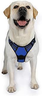 Best dog barking vest Reviews