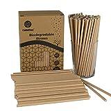 GoBeTree 300 Pajitas de Papel biodegradables Papel Kraft, Pajita Desechables ecológicas compostables. Cañitas para Fiestas, cumpleaños. Bebidas frías y Calientes