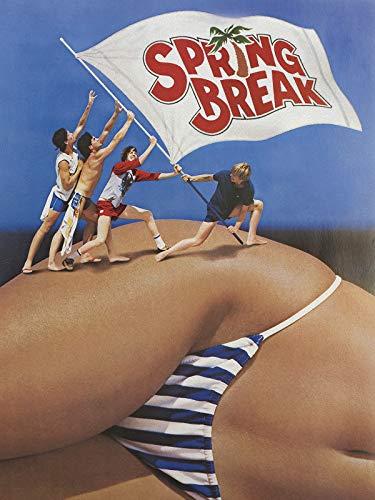 Top 10 Best Spring Break Singles Cruise Comparison