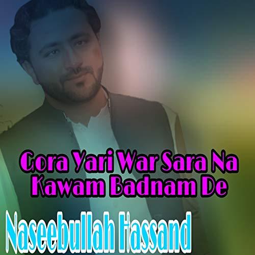 Ze Wa Bal Watan Ta Musafar Zma Janan So
