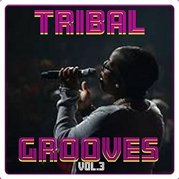 Tribal Grooves Vol. 3
