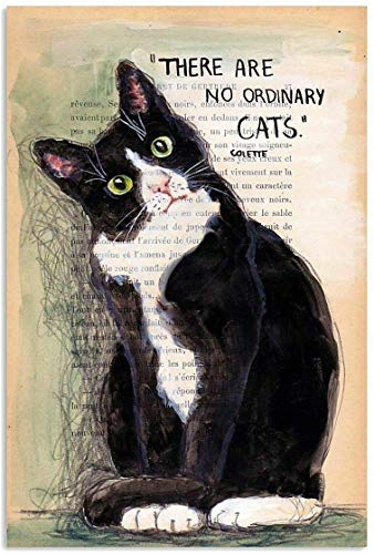 Hopes's There are No Ordinary Cats Metal Signs Vintage Funny Home Gift Farm Bathroom Bar Pub Animal Bedroom Courtyard ParlorCaveat Garage Retro Posters Plaque Wall Decor 8 x 12 Inch