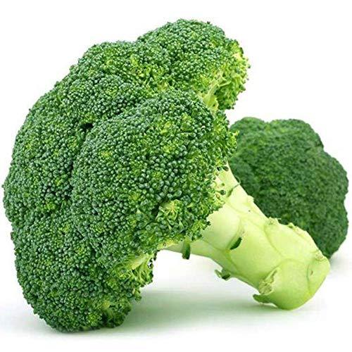 Semillas de brócoli 280+ Semillas orgánicas de hortalizas
