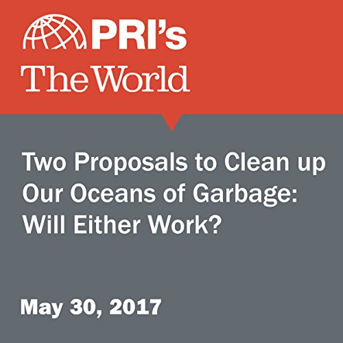 Two Proposals to Clean Up Our Oceans of Garbage: Will Either Work? audiobook cover art