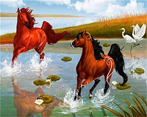 HU0QWPKU paard loopt op de rivier digitaal volwassen zeildoek kinderversiering kunstgeschenk voor meisjes cartoonbeeld kleurschilderen 30 cm x 40 cm.