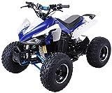 Kinder Elektro Quad S-14 Speedy 1000 Watt Miniquad Kinderfahrzeug Midiquad