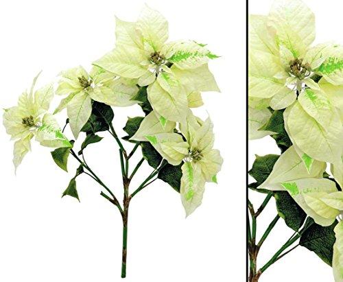 Christstern Busch cremefarben, Höhe 60cm - Kunsblumen künstliche Blumen Kunstpflanzen künstliche Pflanzen Blumen