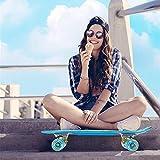 Zoom IMG-1 skateboard mini cruiser retro board