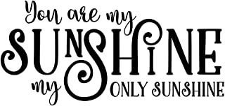 Wall Decor Plus More WDPM3746 You are My Only Sunshine Wall Decals Love Quote, 23 x 11