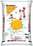 長崎県産 白米 にこまる 10kg 平成29年産