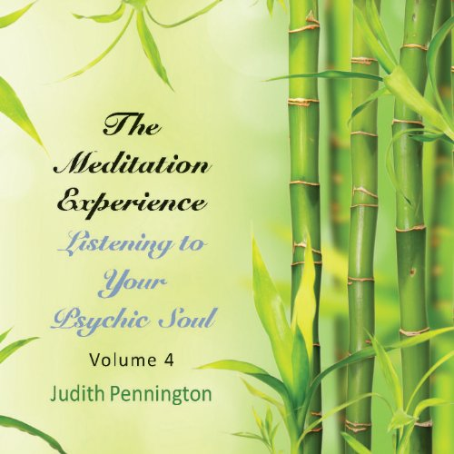 The Meditation Experience, Vol. 4 audiobook cover art