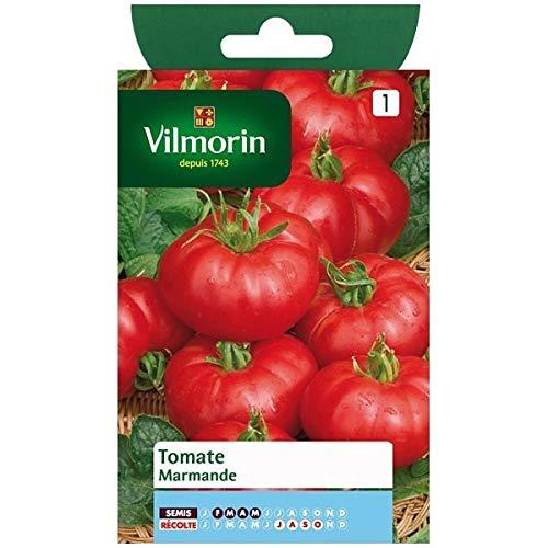 Vilmorin - Sachet graines Tomate Marmande