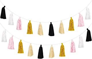 Cotton Tassel Garland Colored Tassels Banner Decorative, Total 20pcs Tassel Wall Hangings for Boho Home Decor, Baby Shower, Birthday Christmas Day Party, Nursey Room (2 Pack)